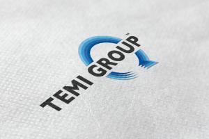 Temi Group
